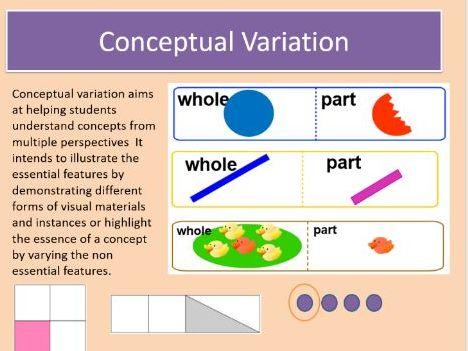 Conceptual and procedural variation