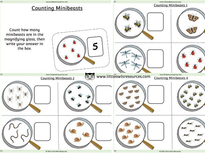 Minibeasts Counting Sheets - EDITABLE