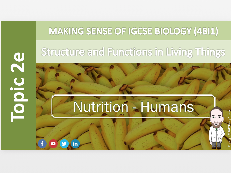 IGCSE Biology 9-1 - 2e Nutrition - Humans