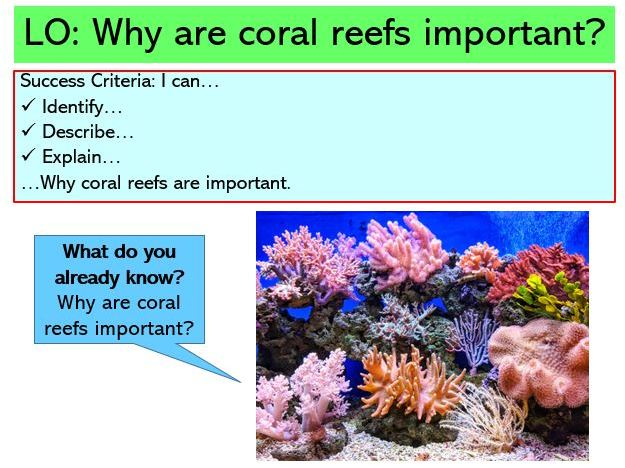 L2. Why are coral reefs important?