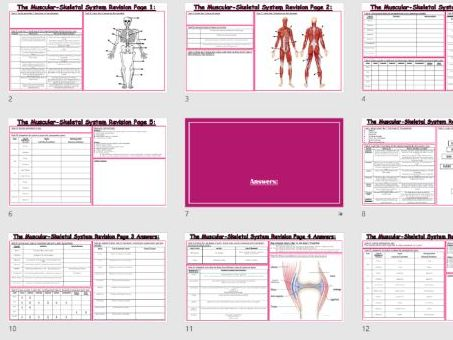 AQA 9-1 GCSE PE - Musculo-Skeletal System Learning Progression Mat