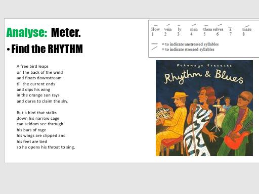 Caged Bird. Maya Angelou.  Meter, rhyme and rhythm.