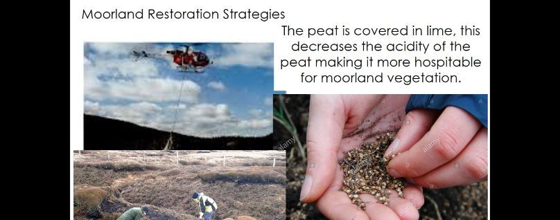 GCSE Geography - Management of ecosystems, UK Moorland (Wetland) focus