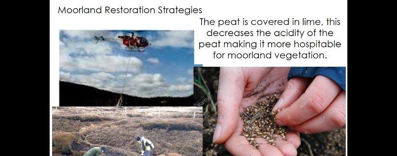 GCSE Geography - Management of ecosystems, UK Moorland (Wetland) focus