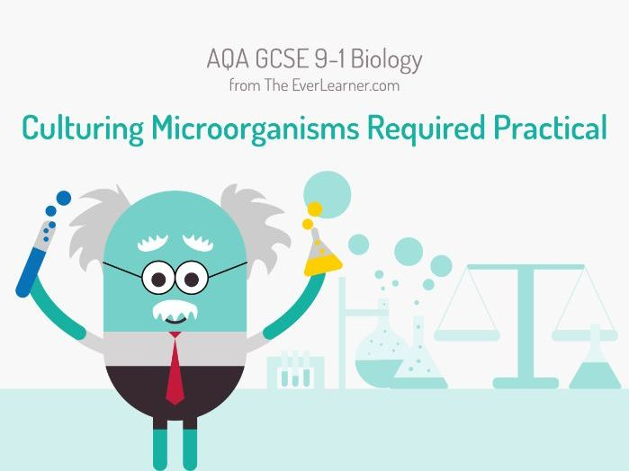 AQA GCSE 9-1 Biology: Culturing Microorganisms Required Practical