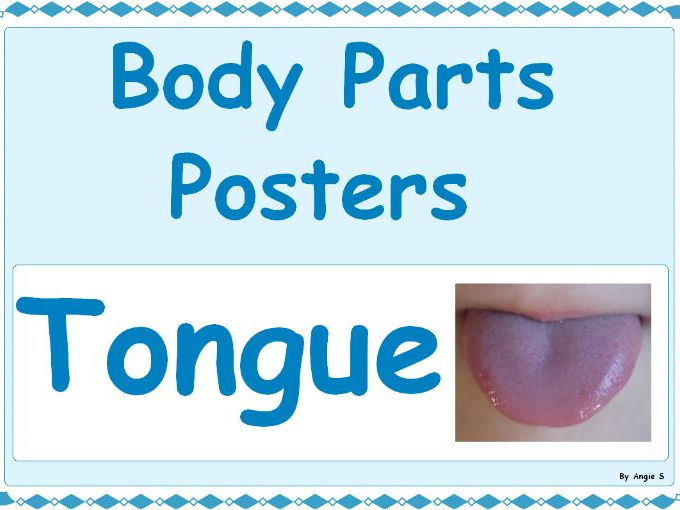 BODY PARTS POSTERS