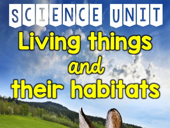 Image result for living things and their habitats year 4