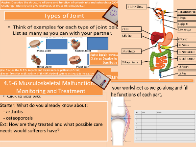 Unit 4 L3 Health and Socia Care LO3.1-6 AND LO41.-6 Digestive and Musculoskeletal Systems Lesson Bundle