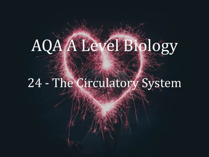 AQA A Level Biology Lecture 24 - The Circulatory System