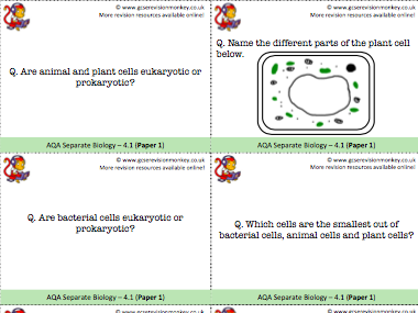 AQA Separate Biology Revision Cards