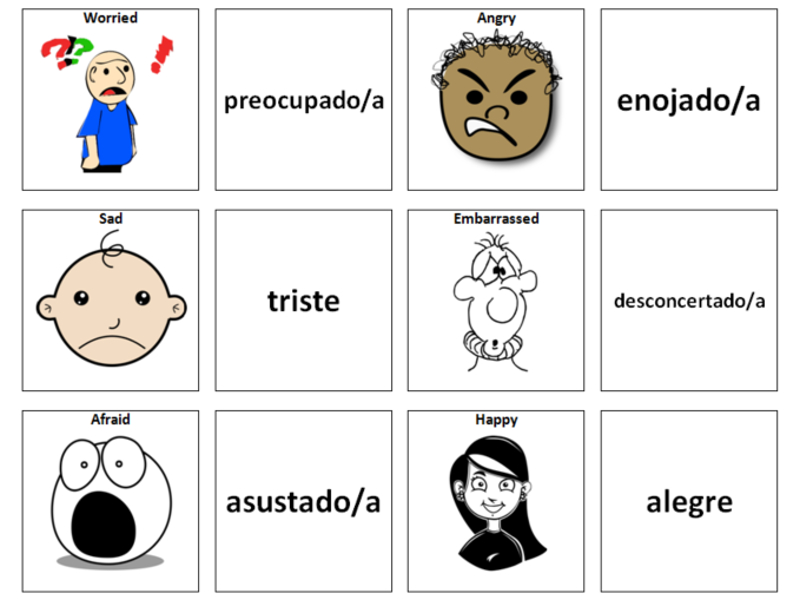 Feelings/Emotions: Spanish Vocabulary Card Sort