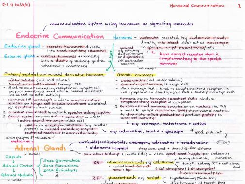 OCR A Level Biology Hormonal Communication Revision Poster
