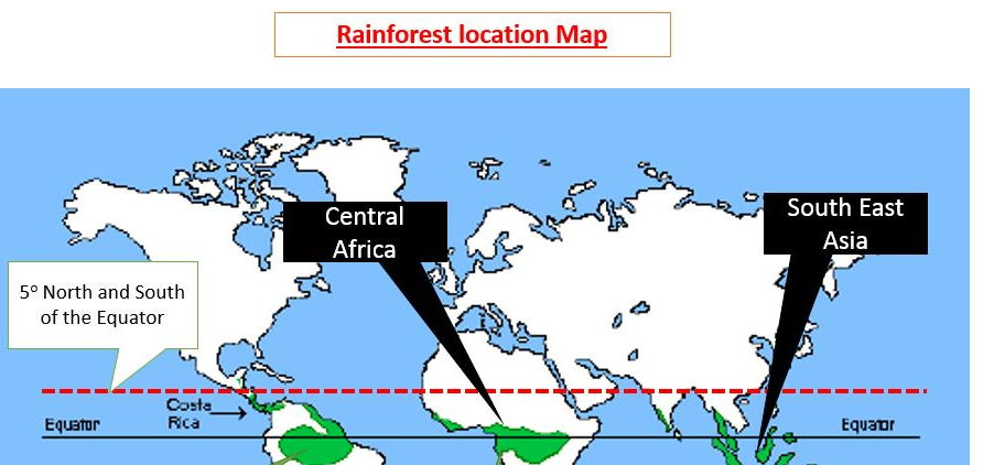 A Level; case study of a tropical rainforest - introducing the Amazon