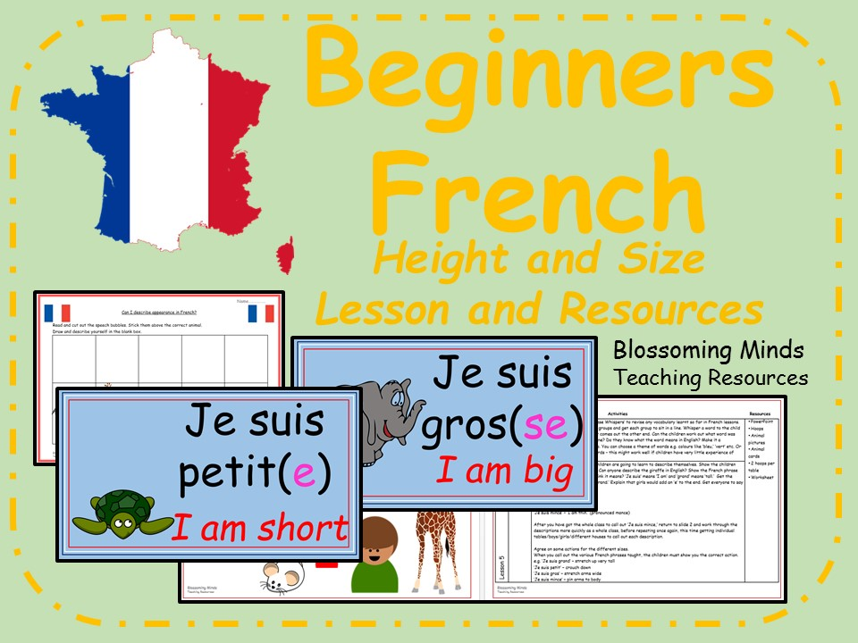 French lesson and resources - Height and size
