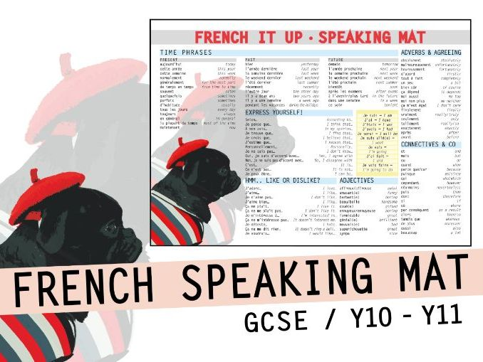 FRENCH LEARNING MAT - Vocab grammar and opinions - GCSE speaking exam