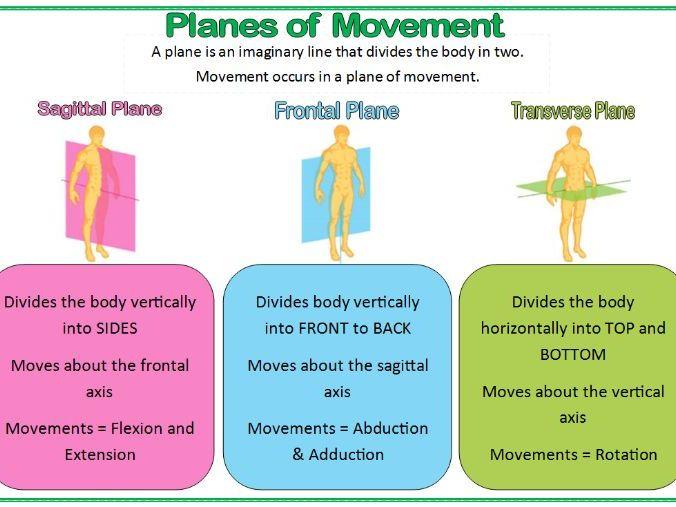 GCSE PE Edexcel (9-1) Revision Flashcards: Movement Analysis