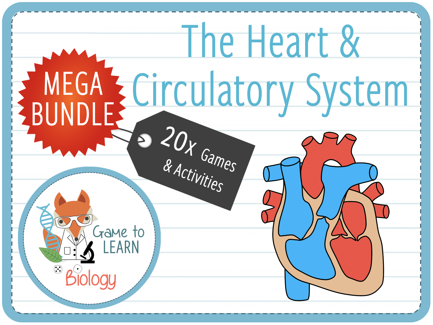 Heart, Blood and Circulatory System - 20x Games and Activities