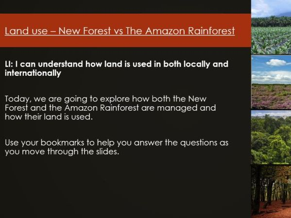 Land Use - New Forest vs Amazon Rainforest - Lesson 3