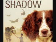 Shadow by Michael Morpurgo - Unit of Work