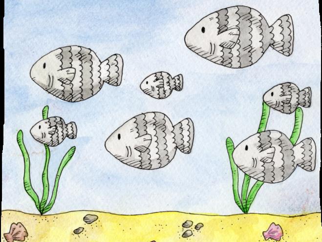 Sea Animals, Hannah's Phonic Stories, ea sound
