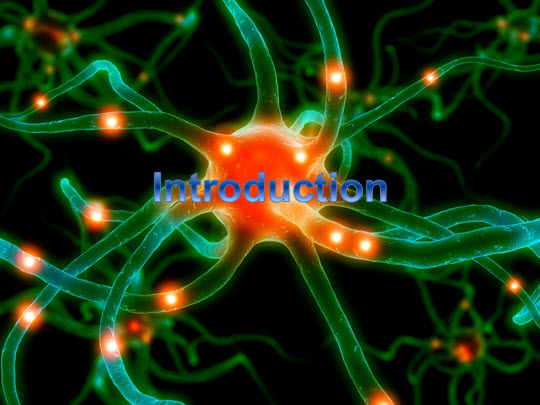 Memory: Introduction to memory sessions 1 and 2