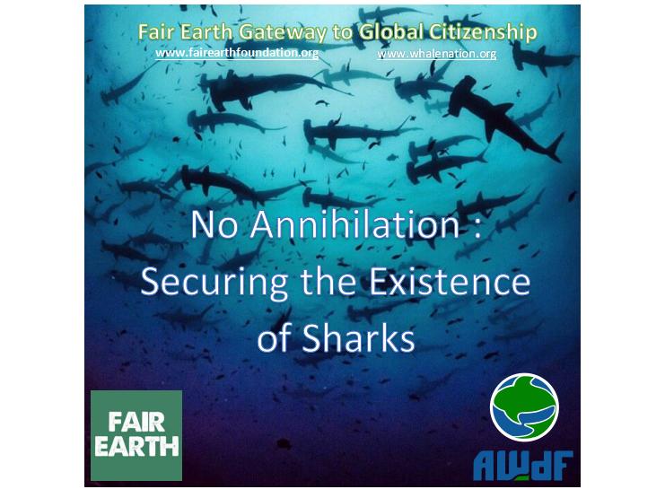 Saving Sharks - Fair Earth Resources