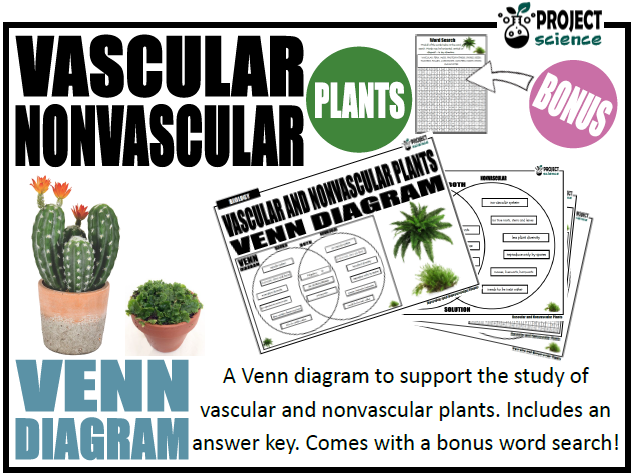 Vascular And Nonvascular Plants Venn Diagram