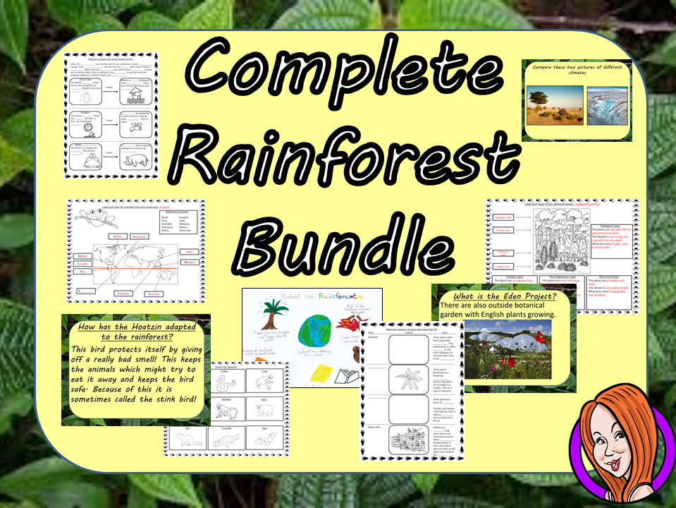 Big Rainforest Lessons STEAM Bundle