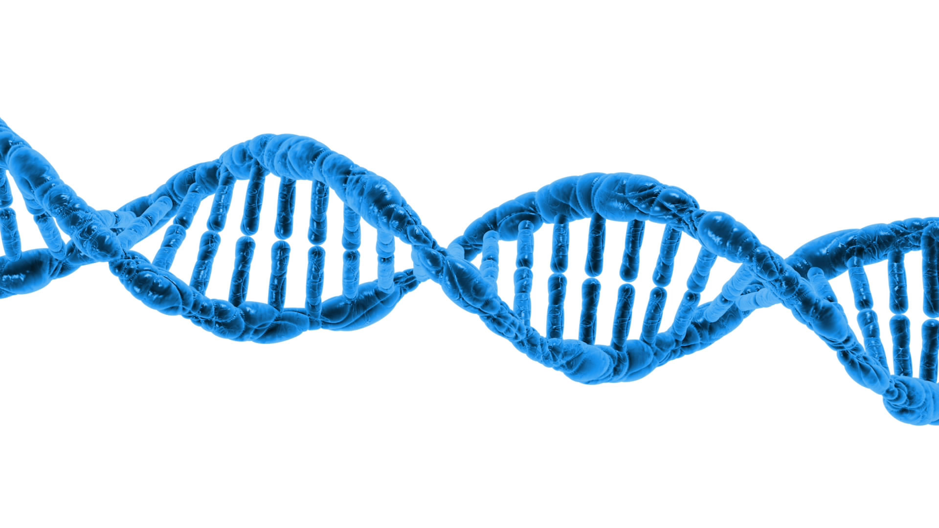 Variation  - Edexcel 9-1 GCSE Biology: Topic 3, lesson 7 Variation