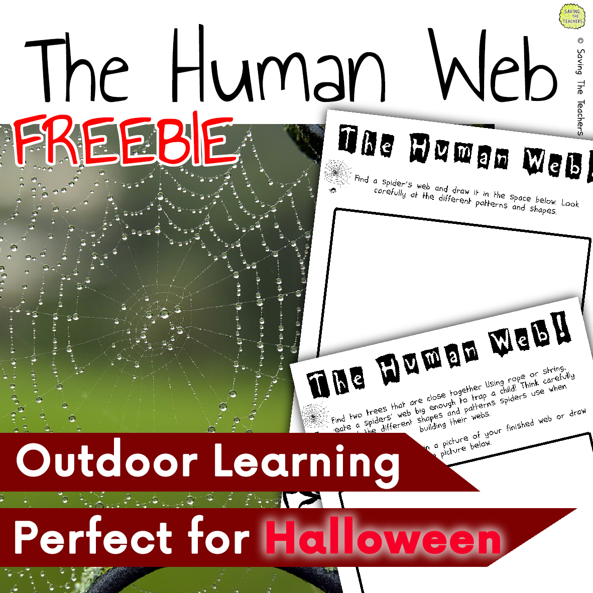 The Human Web Outdoor Science Activity