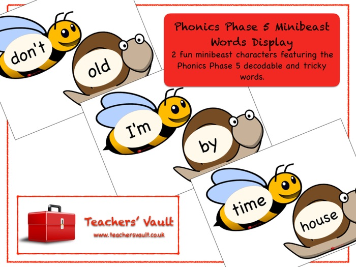 Phonics Phase 5 Minibeast Words Display