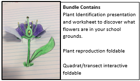 Ecology and Plant ID bundle  - save 38% if you buy now