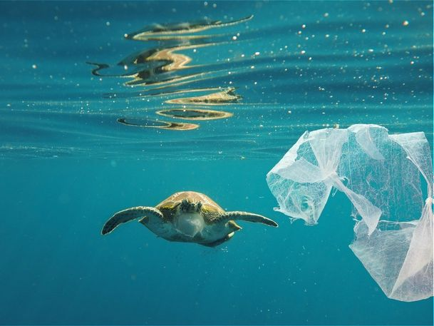 Natural Disasters / Protect Our Oceans / Pollution