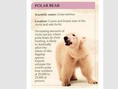 The Arctic and Antarctica - FACT FIND Posters and LESSON PLAN
