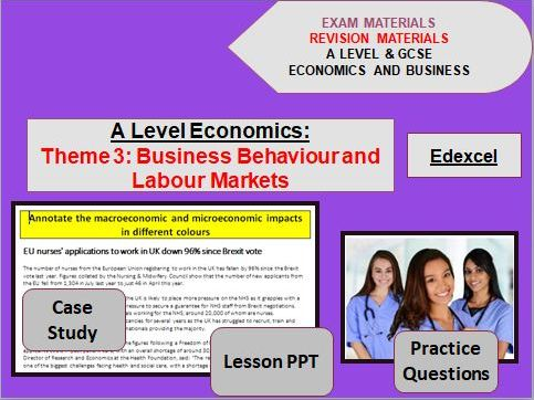 Theme 3 Economics Bundle: Business Behavior and Labour Markets