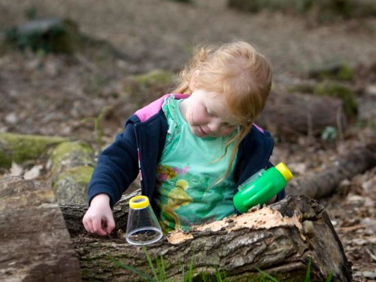 Mini-beast hunting outdoors - instructions and ideas