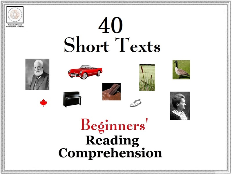 Beginners' Reading Comprehension: 40 Short Texts