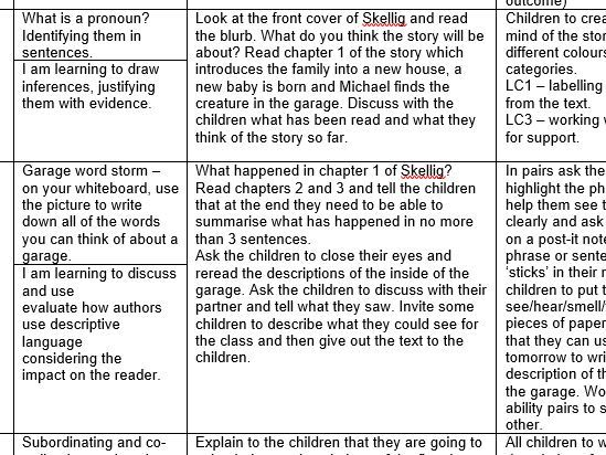 Year 5/6 full lessons plans for English - Skellig