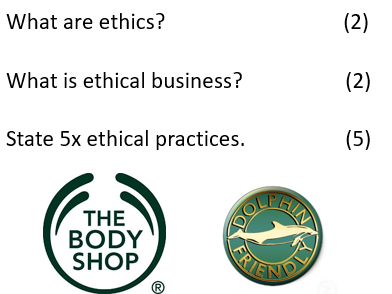 COMPLETE LESSON: Business Ethics / Social Costs (INC. PPT, ASSESSMENT, DIRT SHEET)
