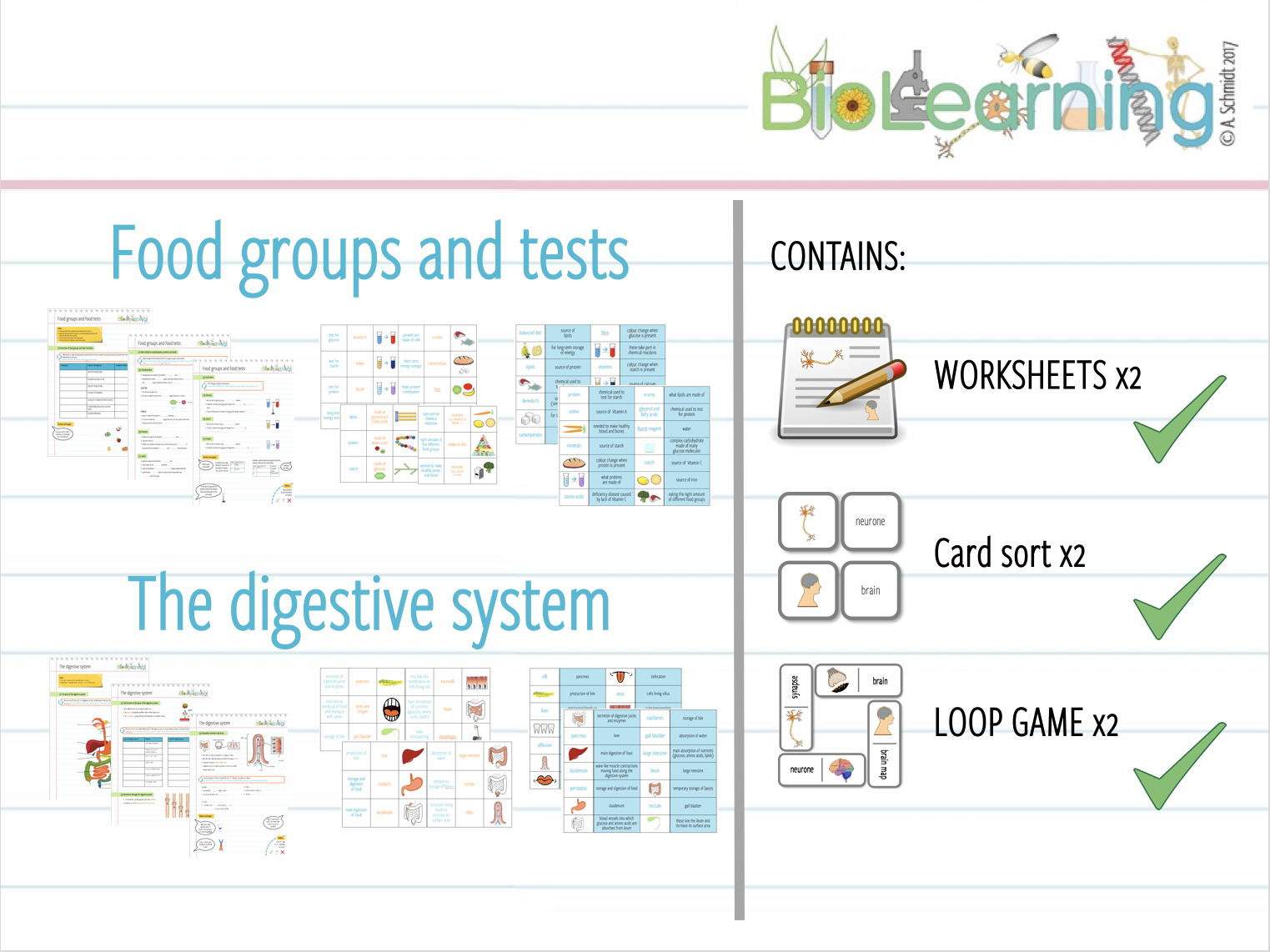 Food groups & tests AND digestive system - worksheets, card sorts, loop games - 6 resources (KS3/KS4)