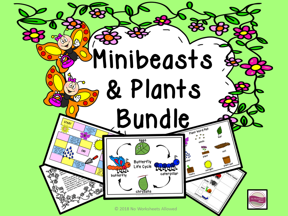 Minibeasts and Plants Bundle