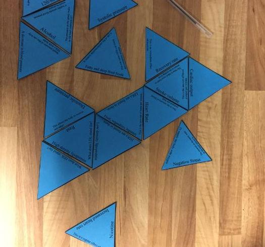 GCSE PE AQA Health, Fitness & Well-being Tarsia Triangle Puzzle