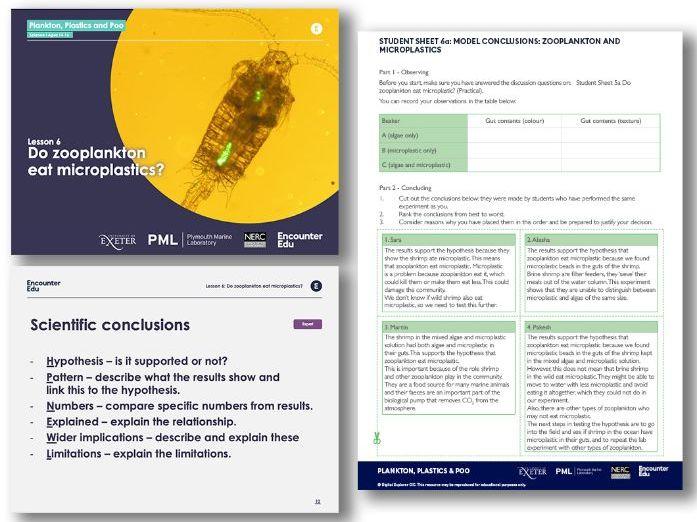GCSE Science - Writing scientific conclusions