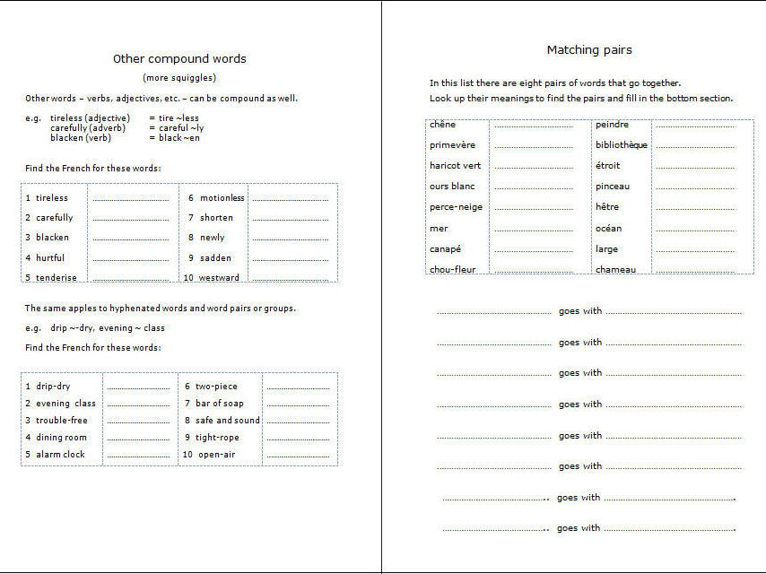French Dictionary Skills Workbook