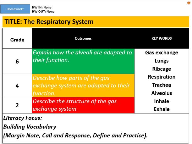 KS3: The Respiratory System