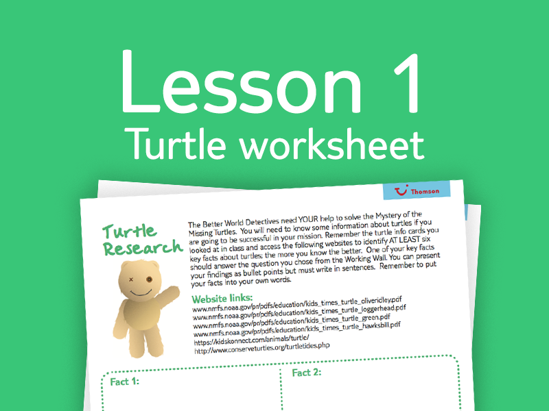 Lesson 1 - Activity 8: Turtle worksheet