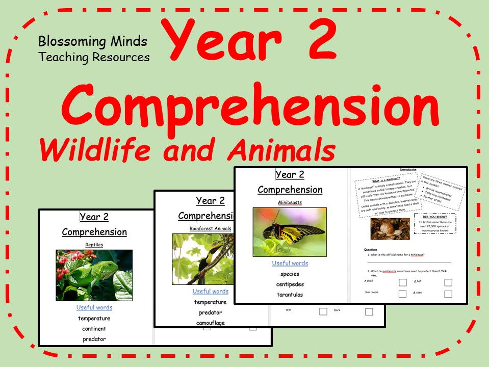 SATs comprehension bundle - Wildlife