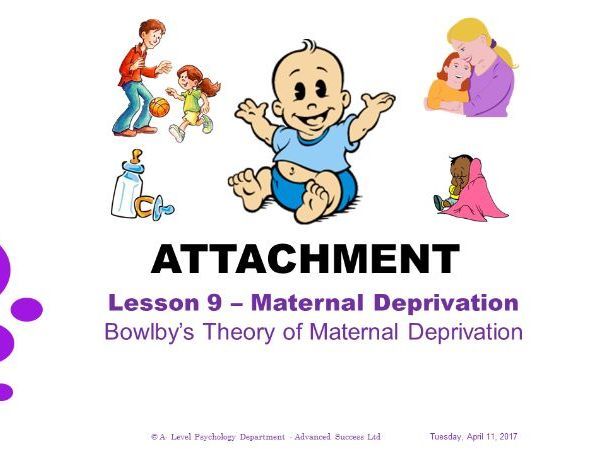 Powerpoint - Attachment - Lesson 9 - Bowlbys Theory of Maternal Deprivation