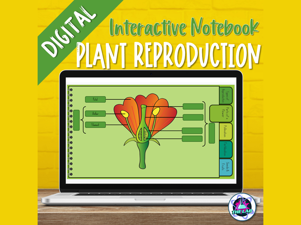 Plant Reproduction Digital Interactive Notebook