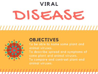 B5.6 Viral Diseases (2018 exam)